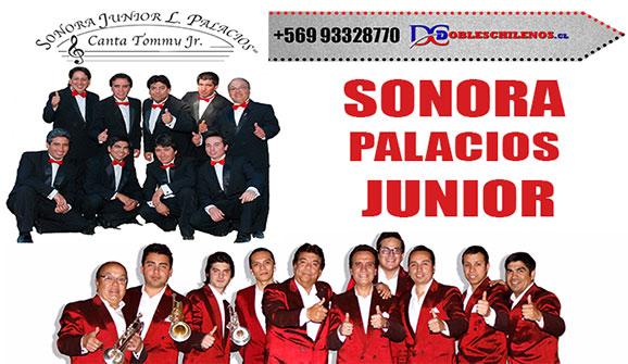 http://www.dobleschilenos.cl/sonora-palacios-junior/